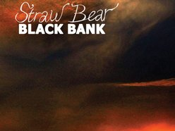 Image for Straw Bear
