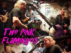 Image for The Pink Flamingos
