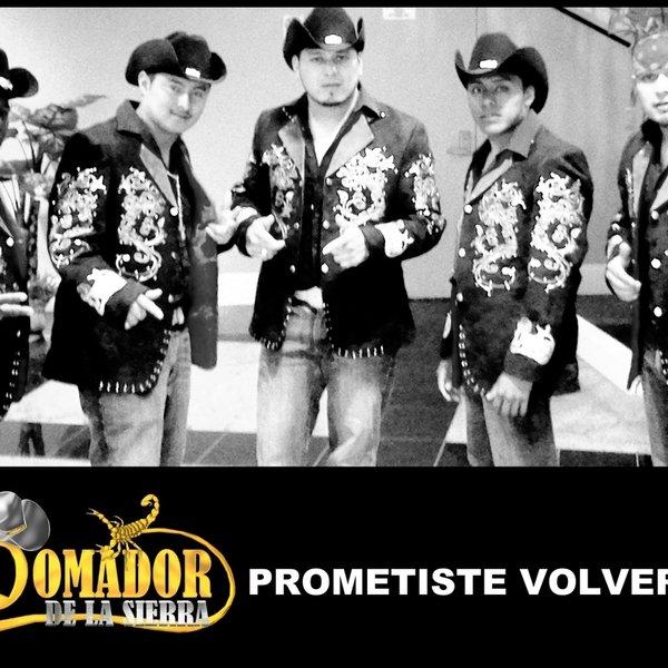 Prometiste volver by Domador De La Sierra | ReverbNation