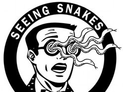 Image for Seeing Snakes