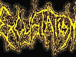 Excystation