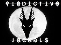 Image for Vindictive Jackals