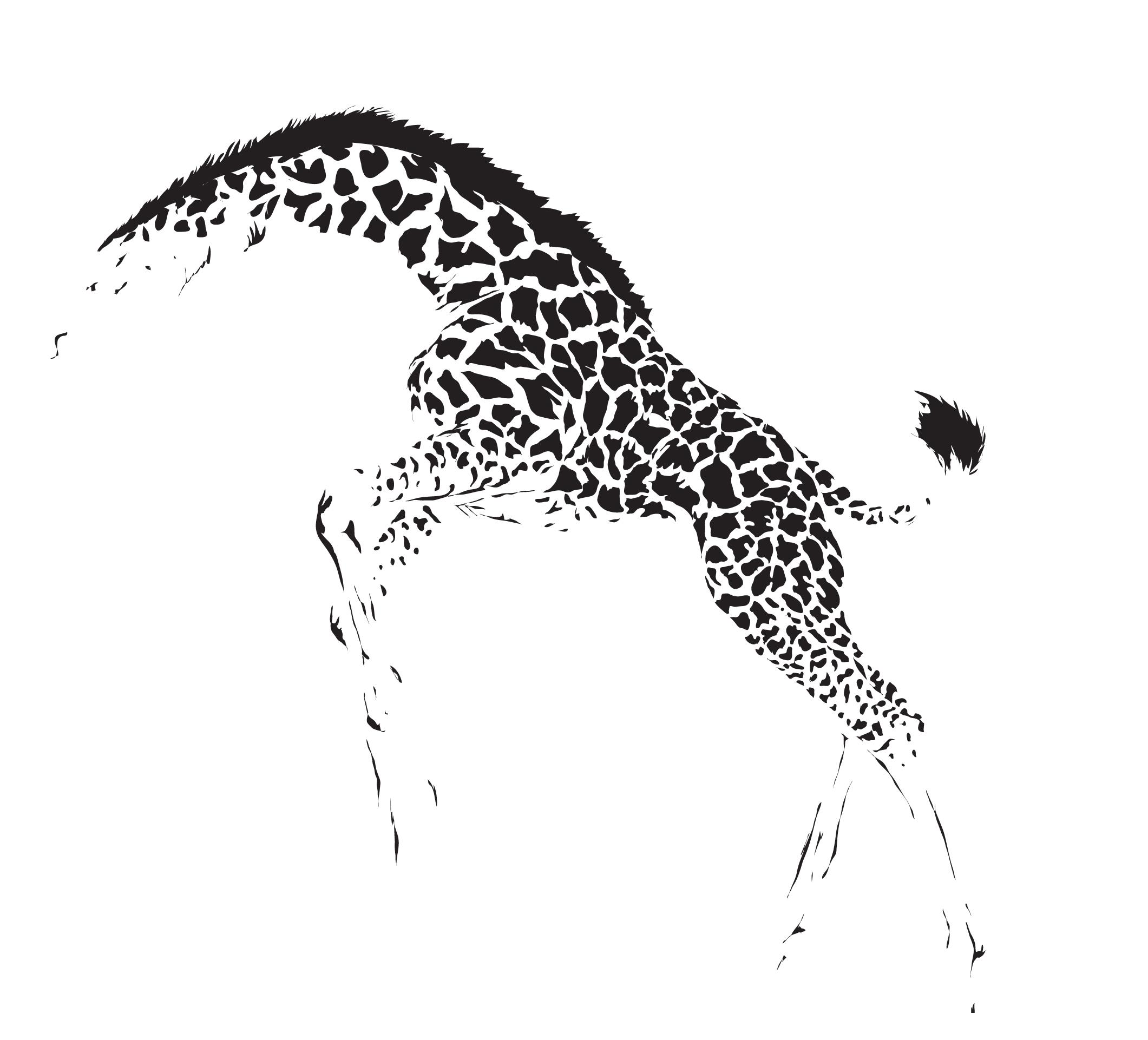 the giraffes reverbnation