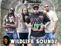 Wildlife Soundz