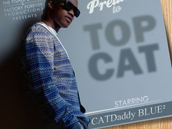 Image for CATDaddy BLUE²