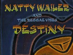 Natty Wailer and The Reggae Vibes