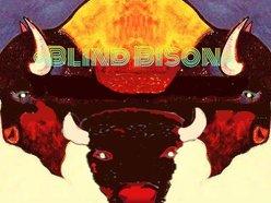 Image for Blind Bison