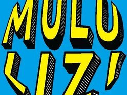 Image for Mulu Lizi