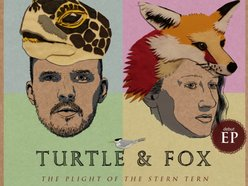 Turtle & Fox