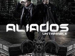 Image for Aliados