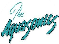 Image for The AquaSonics Surf Band
