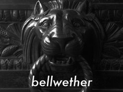 Image for Bellwether