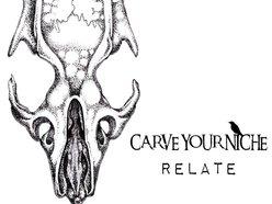 Carve Your Niche