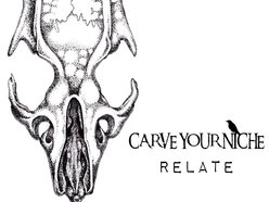 Image for Carve Your Niche