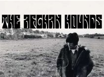 The Afghan Hounds