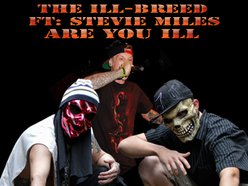 Image for The Ill-Breed
