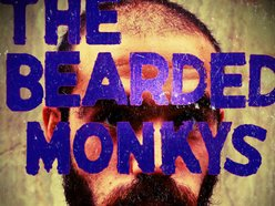 Image for The Bearded Monkys