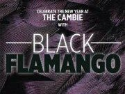 Image for Black Flamango