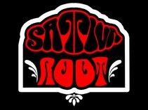 Sativa Root