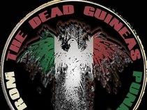 The Dead Guineas