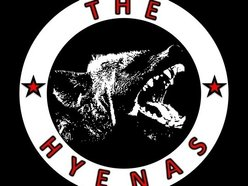 Image for The Hyenas