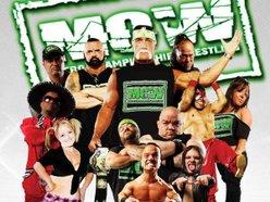 Image for Hulk Hogan's Micro Championship Wrestling