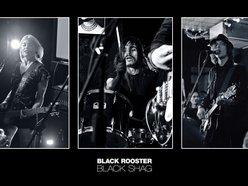 Image for Black Rooster Black Shag