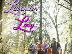 Image for Lavender Lucy