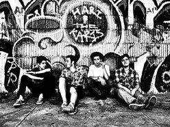 Image for Hari and the Karis