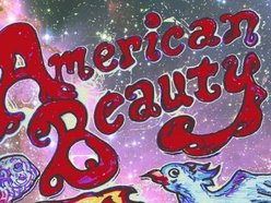 Image for American Beauty