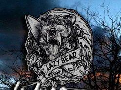 Image for Lazy Bear
