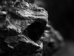 LensItPhotography