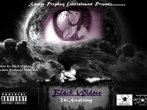 The BlackWidow 2013