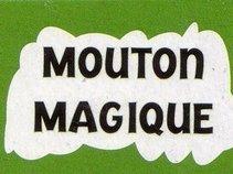 Mouton Magique