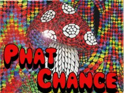 Image for Phat Chance Trio