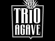 Trio Agave