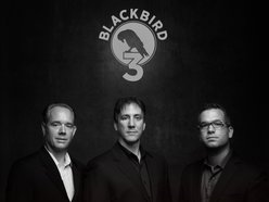 Image for Blackbird 3