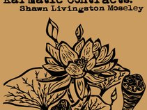 Shawn Livingston Moseley