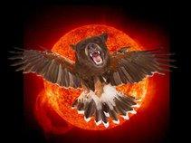 BearHawk