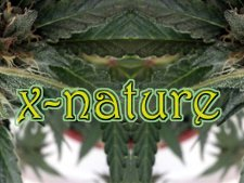 X-Nature