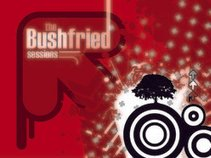 bushfried