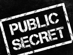 Image for Public Secret