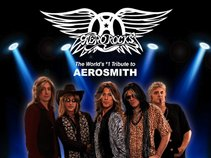 Aerorocks-The World's #1 Tribute To Aerosmith