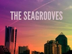 Image for The Seagrooves