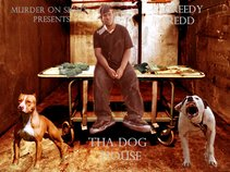Greedy Redd
