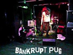 Bankrupt Pug