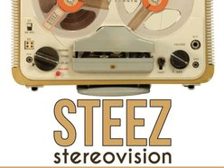 Image for Steez