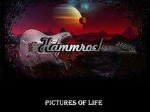 Hammrock Band
