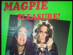 Image for The Electric Magpie