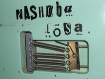 Nashoba Losa'